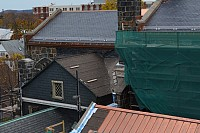 Five roofs and a cricket